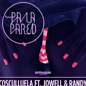 mkHHOUG 300x300 - Cosculluela Ft. Jowell Y Randy - Pa La Pared