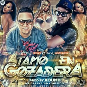 n2r3 300x300 - Mega Sexxx Ft. Randy Nota Loca - Tamo En Gozadera (Prod. By Xound, Mr. Greenz & Magnifico)