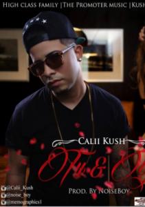 44 211x300 - Calii Kush – Tú Y Yo (Prod. By NoiseBoy)