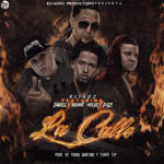 Blingz Ft Darell Bryant Myers Y DOzi La Calle 150x150 - Blingz Ft. Darell, Bryant Myers & D.OZi – La Calle (Preview)