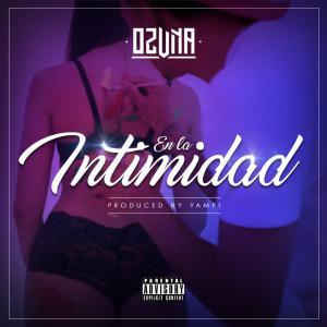 57b0c793ae6af - Ozuna - En La Intimidad – Single iTunes Plus AAC M4A 2016