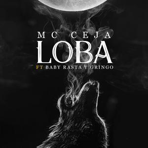 LHcdAHO - MC Ceja Ft Baby Rasta & Gringo - Loba
