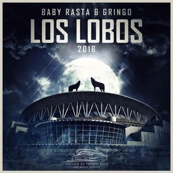 usfmb4bjvcb4 - Baby Rasta y Gringo Van Para El Choliseo De Puerto Rico