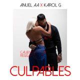 CULPA 160x160 - Karol G Ft. Anuel AA – Culpables (Official Video)