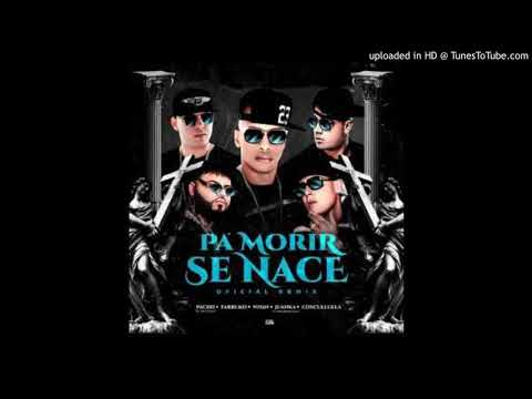 0 65 - Pacho Ft. Farruko, Wisin, Juanka y Cosculluela – Pa Morir Se Nace (Official Remix) (Preview)